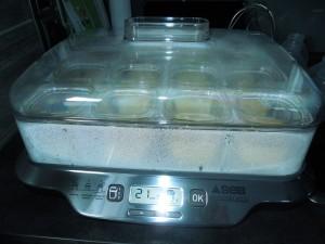 Gateau au yaourt à la yaourtière dans Yaourt & Yop dscn1187-300x225