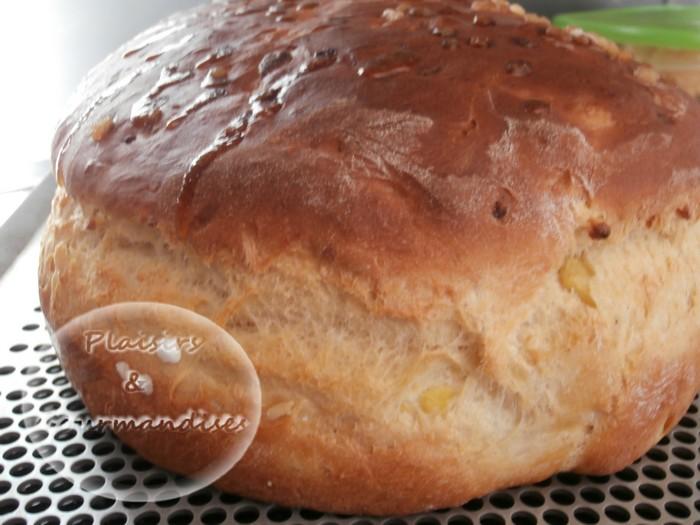 Brioche Pomme-Cannelle dans Moule Rond p3220387