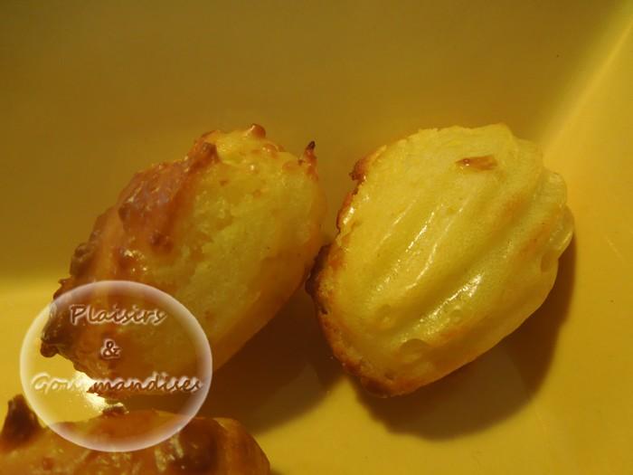 Mini-madeleines moelleuses aux fromages dans Empreintes mini-madeleine dscn1272