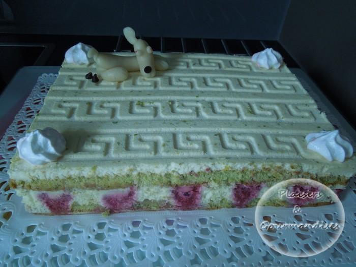 Gateau Pistache chocolat blanc et framboises dans Petit et grand cadre dscn12741