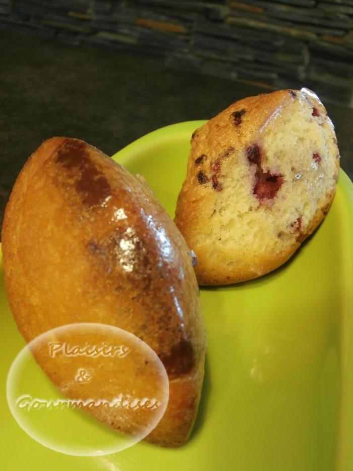 Quenelles moelleuses amande Framboise/Chocolat noir/pralinoise dans Empreintes Quenelle p5190013