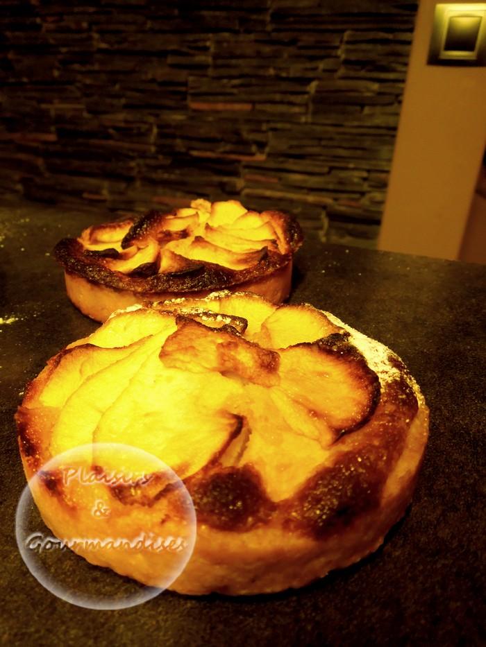 Les tartes à la crème d'amande aux pommes, pêches ou prunes dans Toile Silpain dscn1517